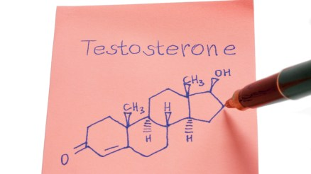 P6 Testosterone Booster