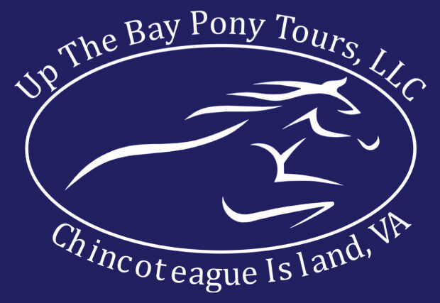 White logo with blue background. Line art - Oval with pony running on the inside. Up the Bay Pony Tours, LLC above the oval. Chincoteague Island VA below the oval.