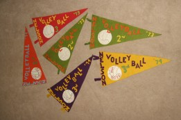 Interschool Tournament Flags
