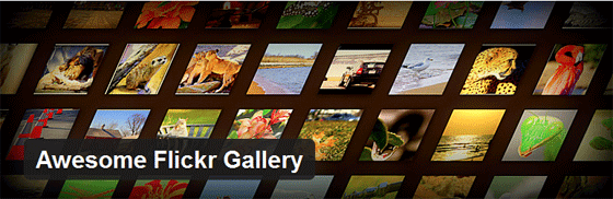 the awesome flickr gallery plugin header