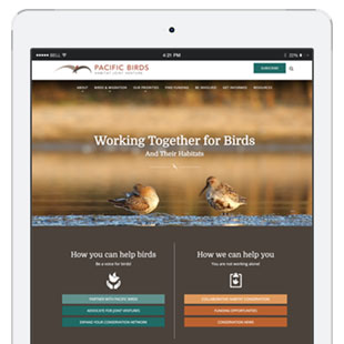 Responsive WordPress Website for Bird Conservation Nonprofit Partnership