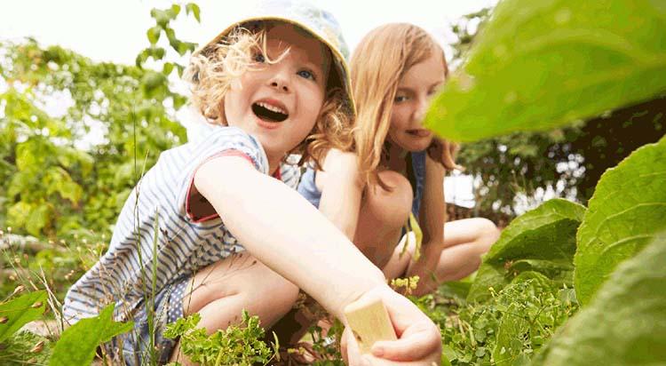 As crianças são feitas de sonhos, é preciso tratá-las com cuidado