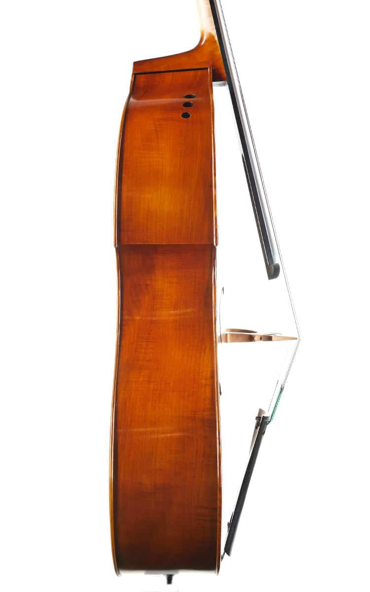 Upton Ergo Double Bass Side