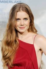 Hairstyles For Long Hair - Amy Adams