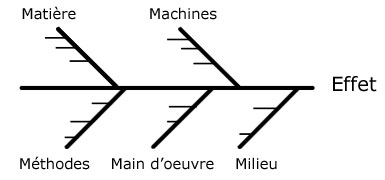 diagramme dishikawa vierge