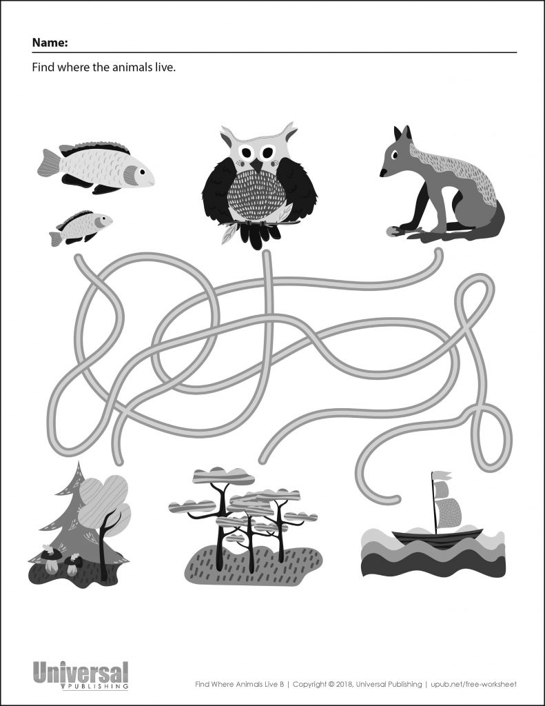 Free Printable for Kids Find Where Animals Live B