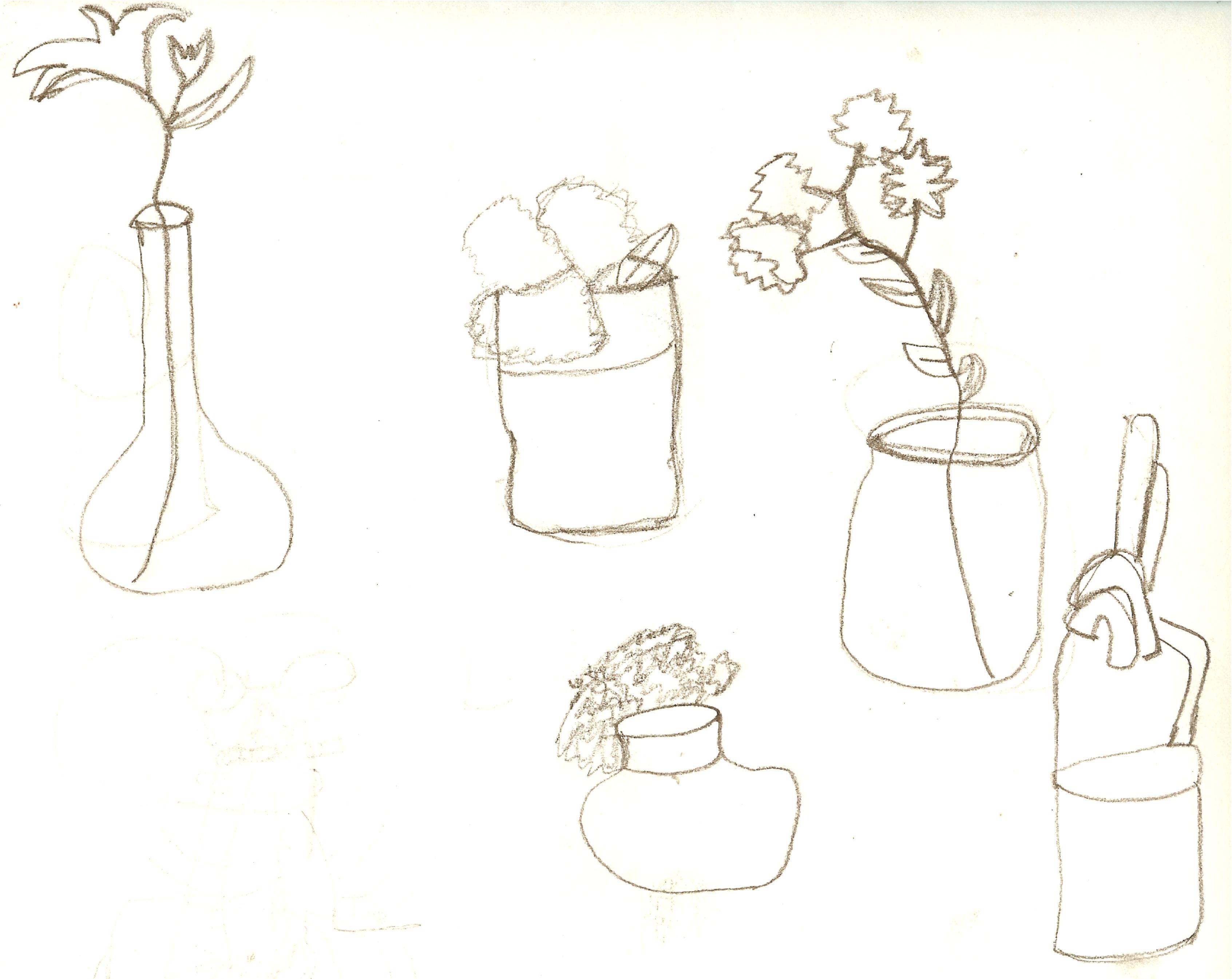 Contour Line Drawings