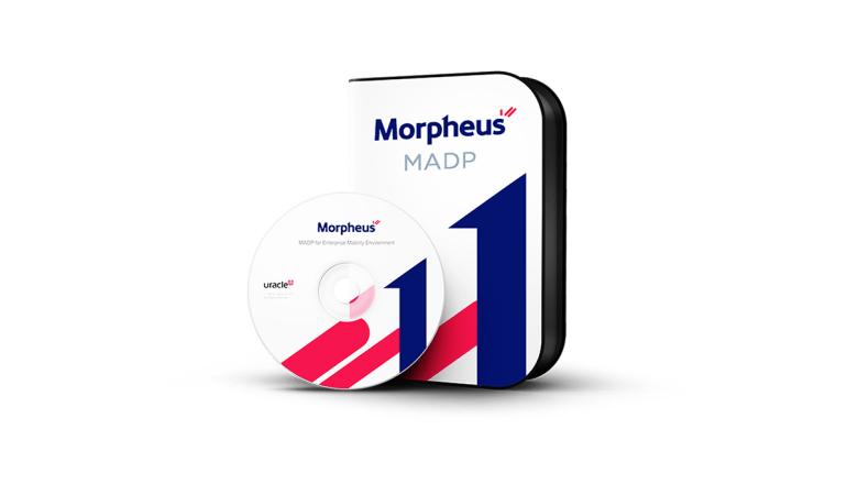 모피어스 모바일 플랫폼 3.0 나라장터 등록