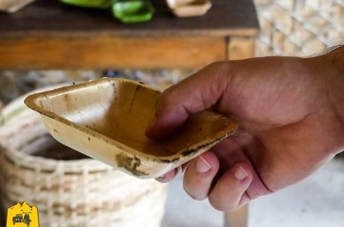 Vaisselle végétale biodégradable - Initiative écologique, Nahm Dong Park, Laos