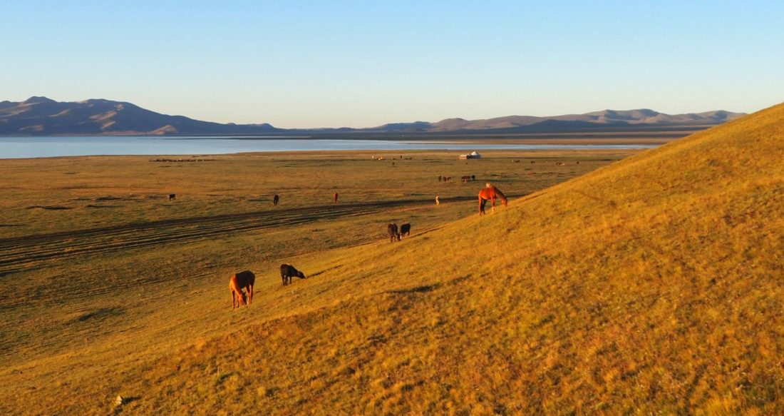 Incontournables Kirghizes, Voyage au Kirghizistan : lac Song Kul