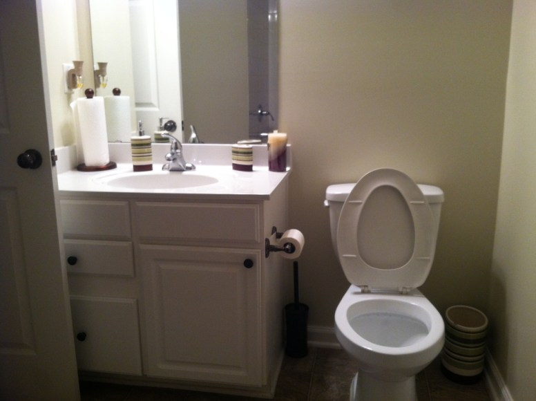 the-cleaning-executives-residential-bathroom