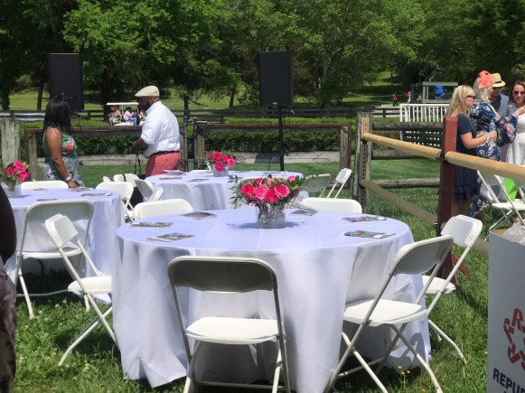 lady-lunch-club-steeplechase1