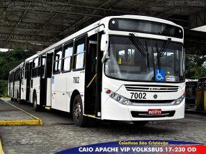 As linhas 1207 Beiru-Tancredo Neves / Pituba e 1223 Sussuarana / Lapa foram as primeiras linhas a operarem com os novos veículos.
