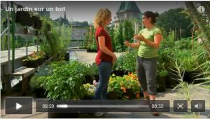 jardin toit