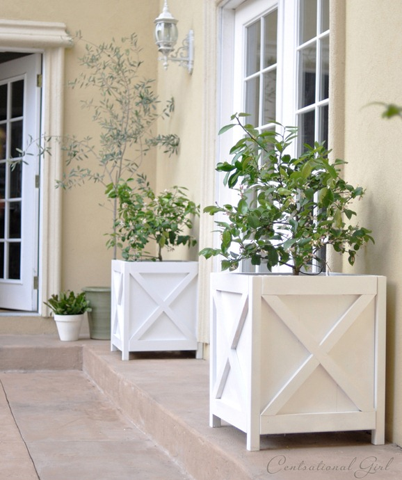 diy-criss-cross-x-pattern-planters