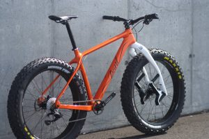 Pearl fat bike