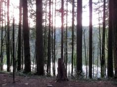 Sun sets over Battle Ground Lake.
