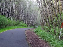 Top of the hill, BV Trail.