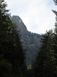 The Cliffs of the Gorge.