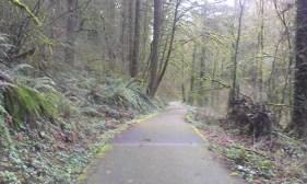 Champoeg bike path.