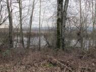 Smith Lake.
