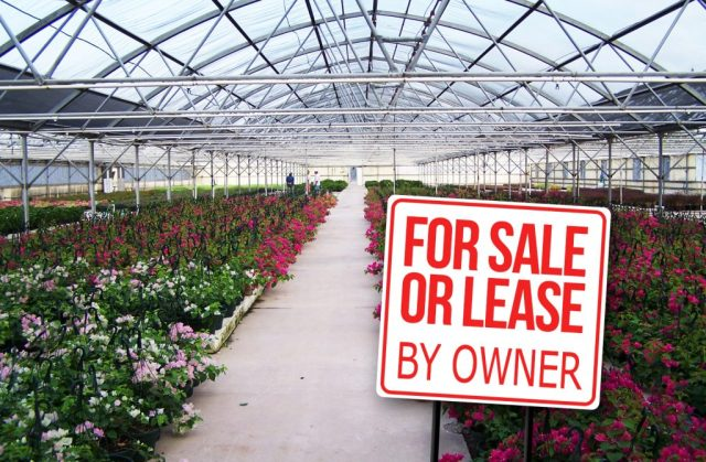 MISSION-TX-greenhouse-for-sale-or-lease