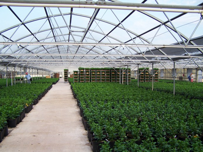 MISSION-texas-greehouse-sale