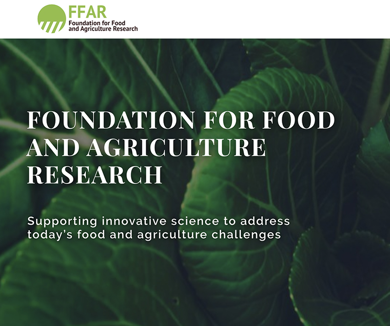 FFAR Seeks Nominations for 2020 New Innovator in Food and Agriculture...