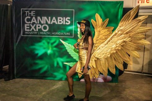 The Cannabis Expo in Cape Town Has Been Postponed