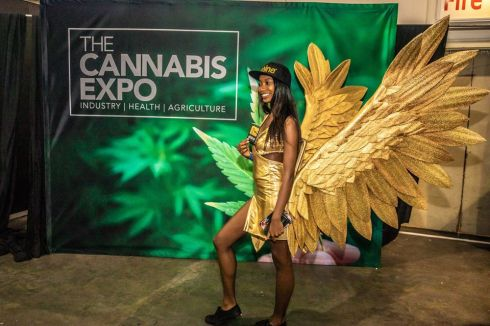 The Cannabis Expo Heads Back to Cape Town
