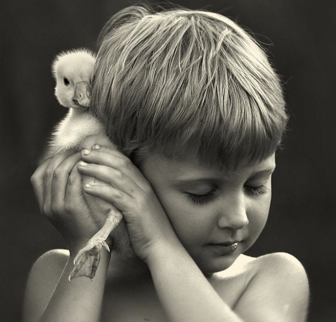 Boys-and-Their-Animals08-685x657