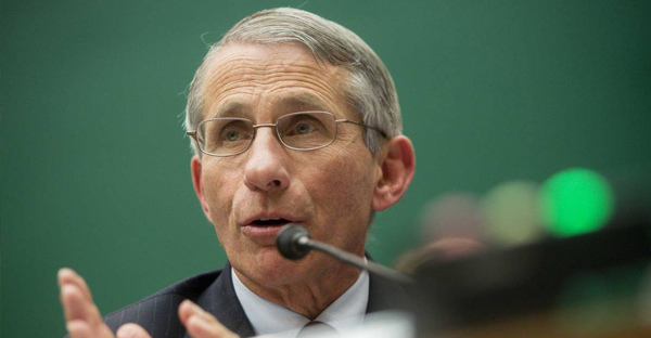 Anthony Fauci, director of the National Institute of Allergy and Infectious Diseases, speaks during a House Energy and Commerce Committee subcommittee hearing on the U.S. public health response to the Ebola outbreak in Washington, D.C., Oct. 2014. (Andrew Harrer—Bloomberg/Getty Images)