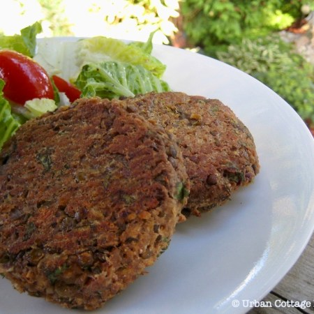 Lentil cakes on a while plate against a bed of salad