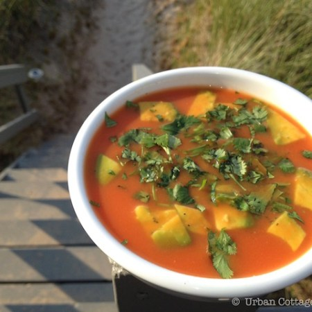 Chilled Thai-Inspired Watermelon Soup   © UrbanCottageLife.com