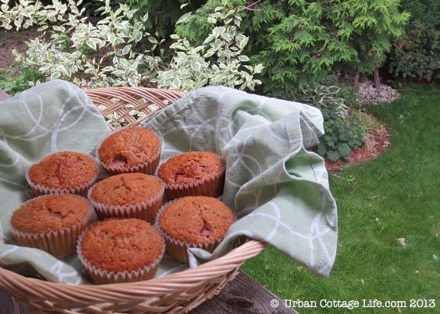 Rhubarb Bran Muffins | © UrbanCottageLIfe.com