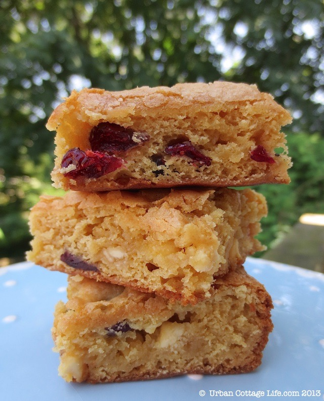 Cream Cheese, Cranberry & White Chocolate Blondies | © UrbanCottageLife.com