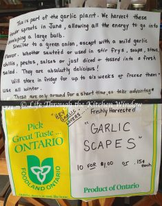 Garlic Scapes Farm Market Sign ⎮ © Life Through the Kitchen Window