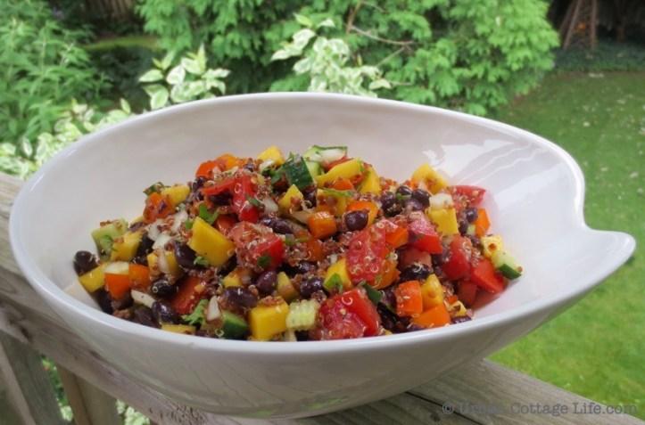 Red Quinoa & Black Bean Salad witih Mango