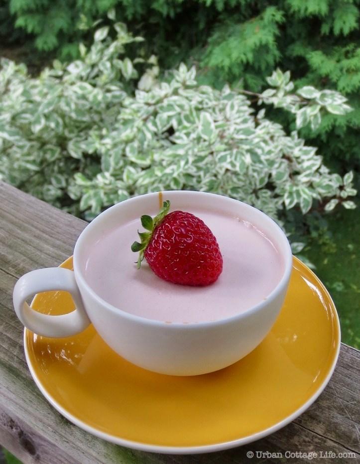 Strawberry Panna Cotta | © UrbanCottageLife.com