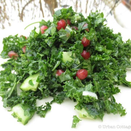 Parsley & Kale Salad with Pomegranate | © UrbanCottageLife.com
