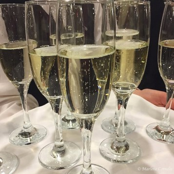 Champagne Reception The Meal 2015   © Marlene Cornelis