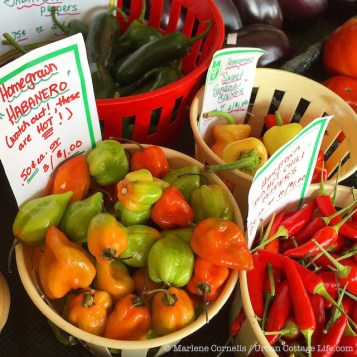 Produce By the Lake | © Urban Cottage Life.com