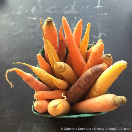 Carrots & Light | © Marlene Cornelis / Urban Cottage Life.com