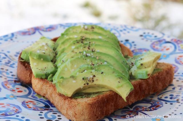 Avocado Toast |© Urban Cottage Life.com