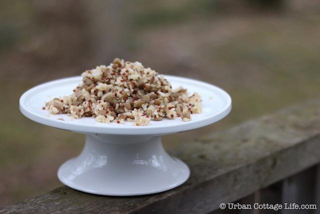 Pre-Cooked Grains & Legumes | © UrbanCottageLife.com