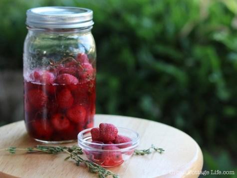 Pickled Peppered Strawberries |© UrbanCottageLife.com
