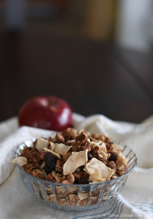 Triple Apple Granola | © UrbanCottageLife.com 2016