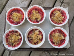 Sassy Rhubarb Strawberry Crisp | © UrbanCottageLife.com