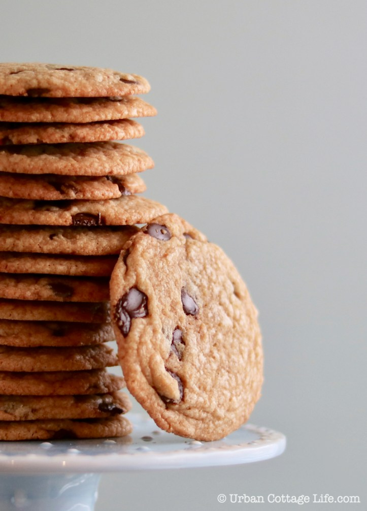 Close-up of a stack of thin chocolate chip cookies with one leaning against the side of it