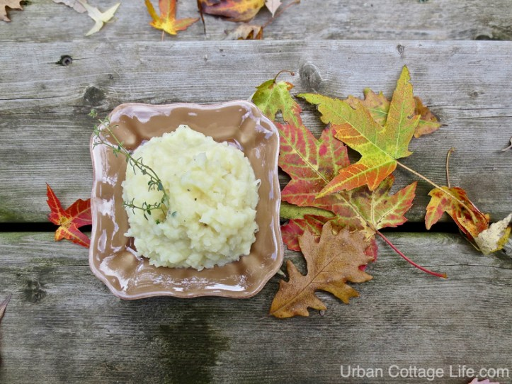 A dish of Potato Turnip Mash garnished with a sprig of thyme on a bed of colourful maple and oak leaves